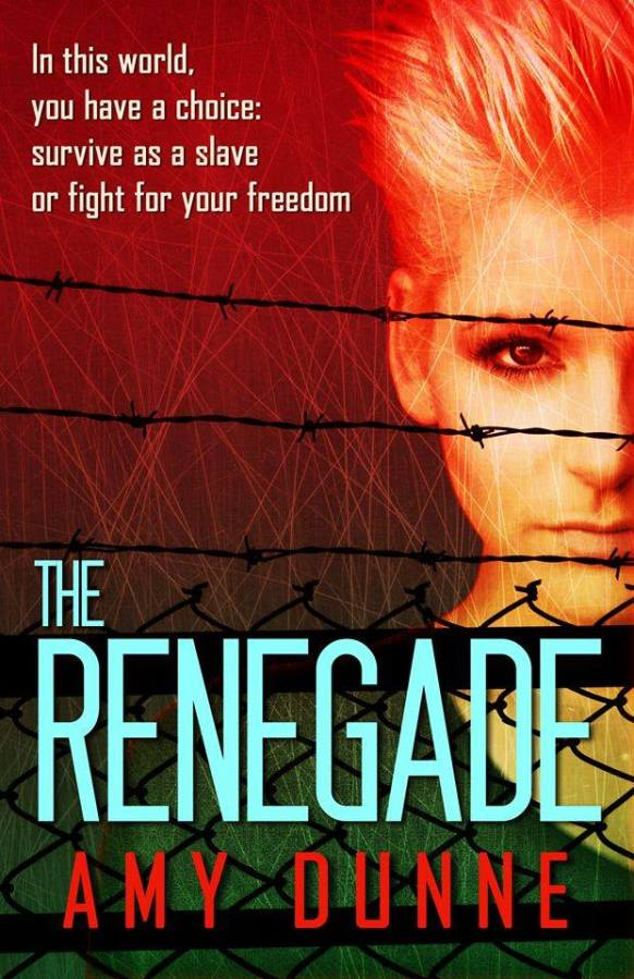 My Review of Amy Dunne's, 'The Renegade'