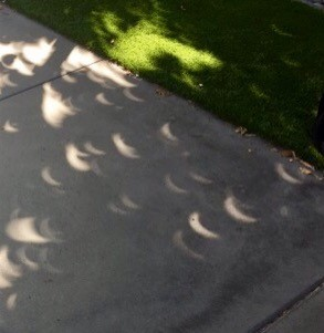 Sun Shadows 2