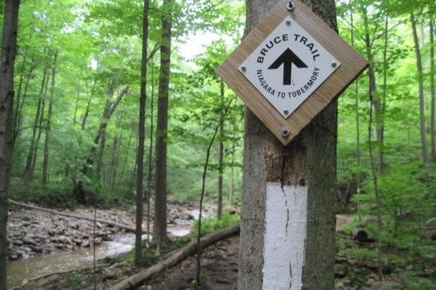 Bruce Trail 4
