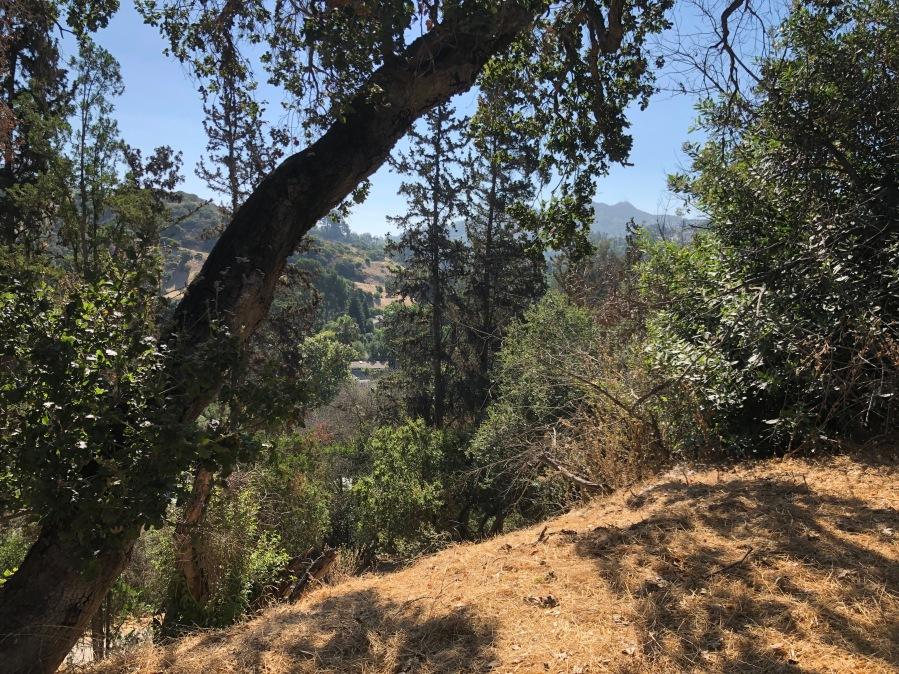 Hiking Blog