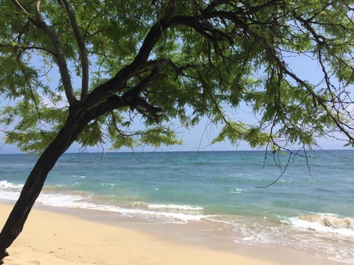 2015-09-10-14.04.27-kauai-beach